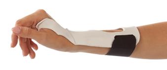 dorsal/palmar